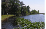 Spring Lake Improvement District
